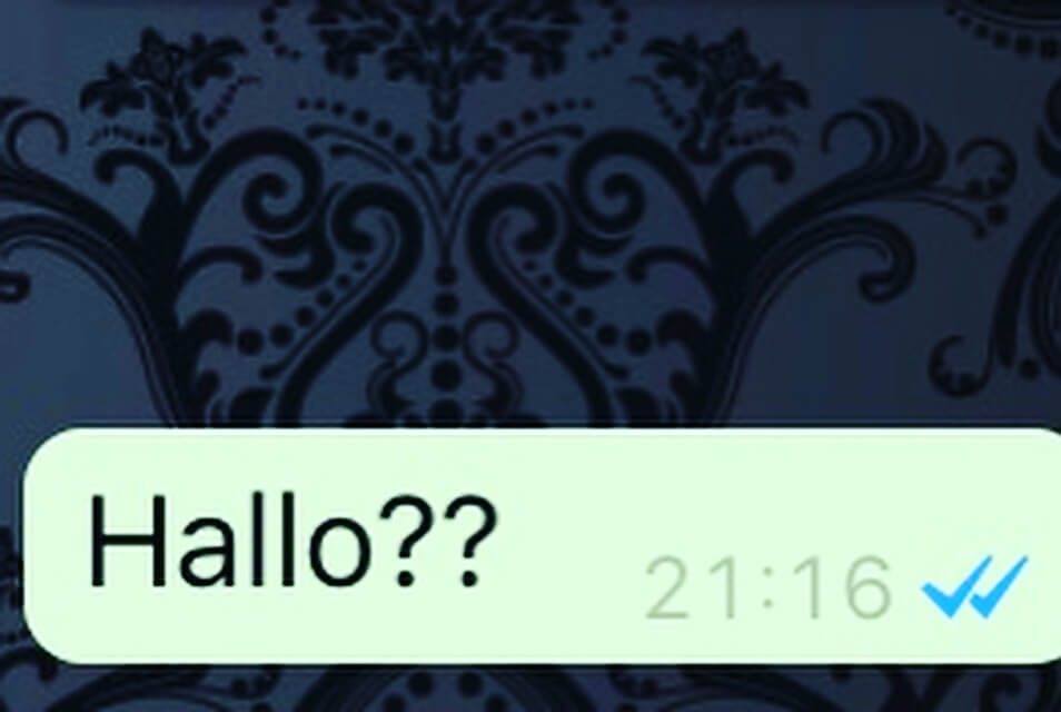 Blauwe vinkjes Whatsapp   Thearie